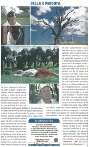 FILM TV recensione